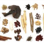 Dispensary of Herbal Medicine